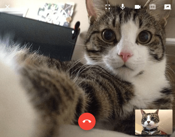 The new videoconferencing features